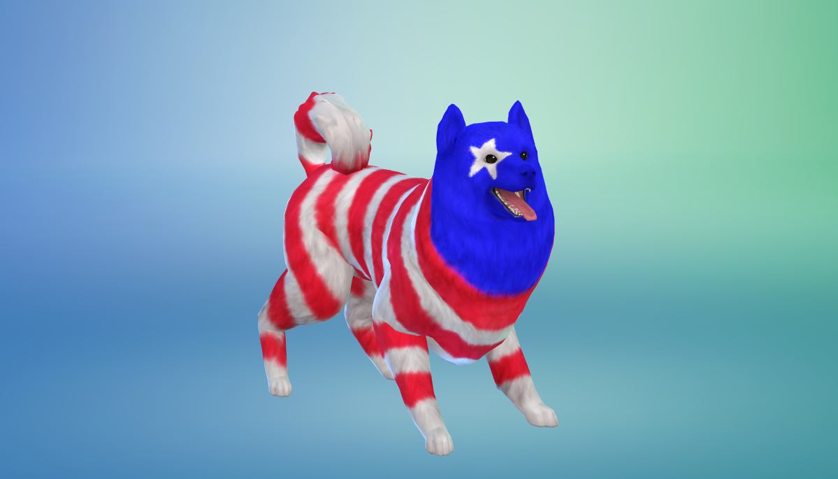 StarsAndStripes.png.adapt.crop16x9.1455w